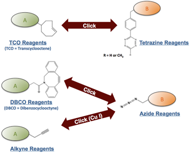 Click Reagents by Chemistry